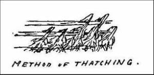 Method of Thatching